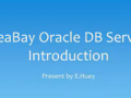 ideaBay Oracle Service Introduction (92 Play)