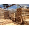 birch lumber of Latvia