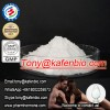 Yohimbine HCL White Powder Male Sex Enhancement For Sex Protein Supplements 65-19-0